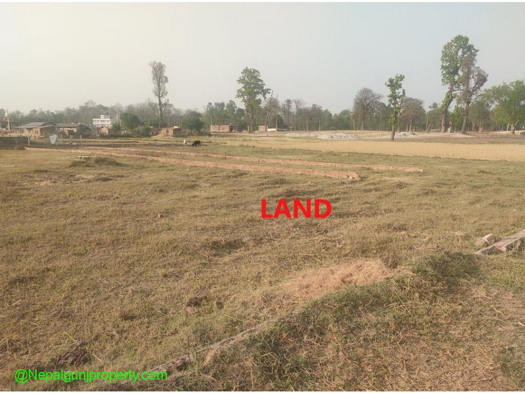 Land for Sale Near Solti Hotel Nepalgunj